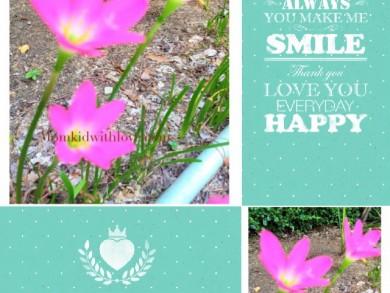 ดอกไม้1